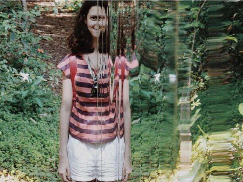 Cristina Iglesias, Vegetation Room