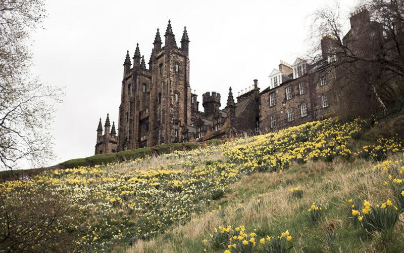 Edimburgo e suas flores