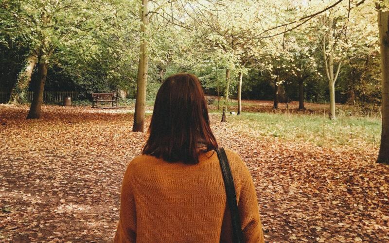 Holland Park no outono