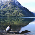 Mulher no Lago congelado Vista do Passeio de Barco Puerto Blest bariloche