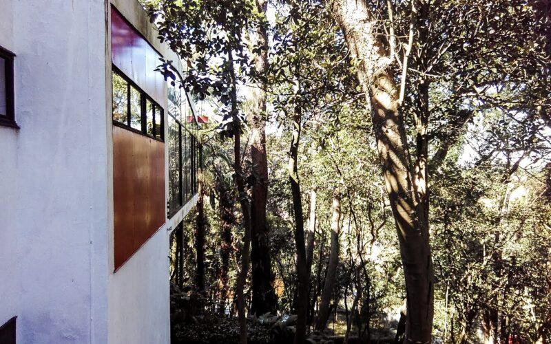 Instituto Lina Bo Bardi, Casa de Vidro, São Paulo