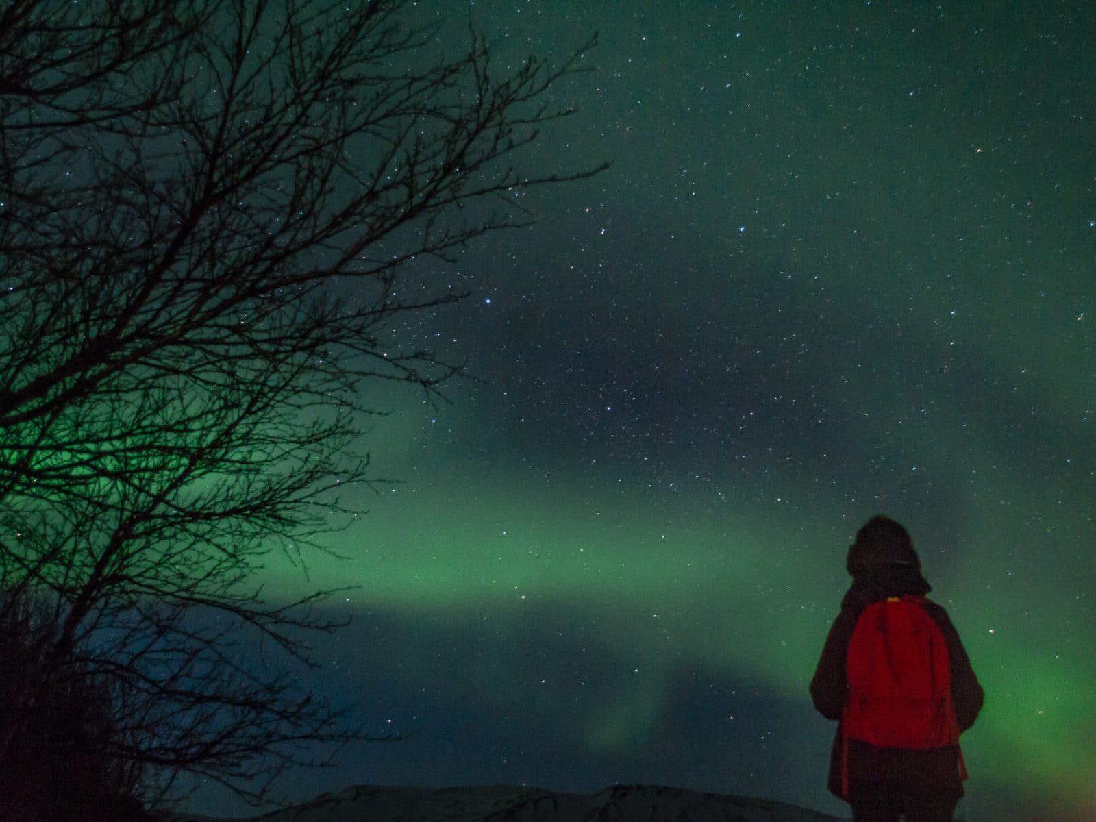 Auroral Boreal, Islândia