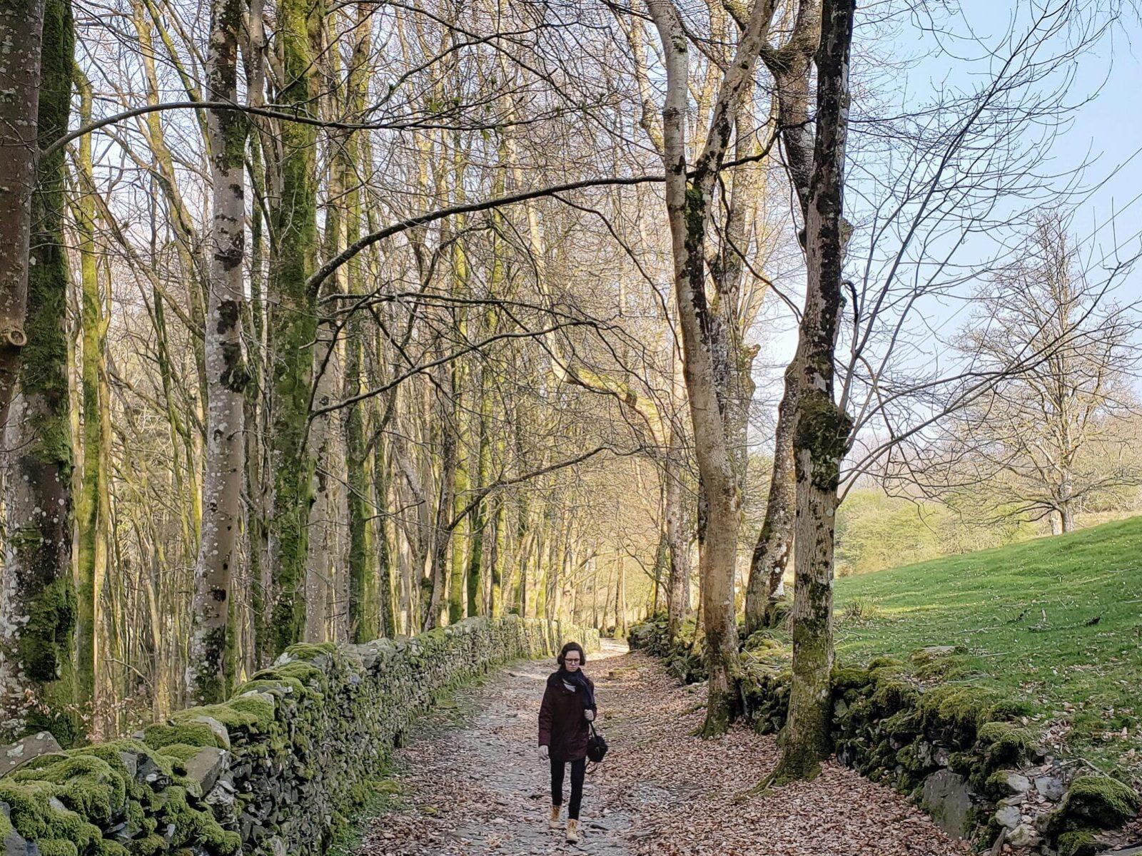 Trilha que nos perdemos no caminho para Fairy Glen George, País de Gales